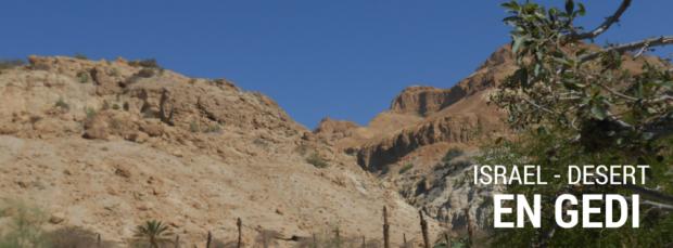 Israel landscapes - En Gedi